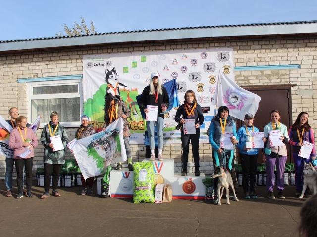 Гонка на собачьих упряжках Чемпионат РКФ «ДРАЙФЕСТ - Осень 2020» 10-11 октября 2020 года
