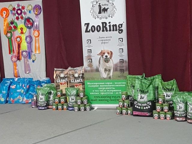 Выставка собак всех пород Созвездие Друзей – 2021 в г. Волгоград 28 марта 2021 года