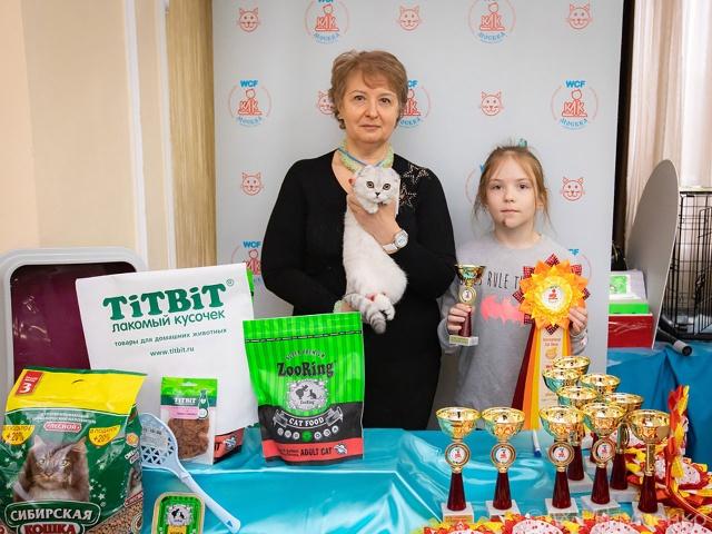Международная выставка кошек в г. Москва 19 декабря 2020 года