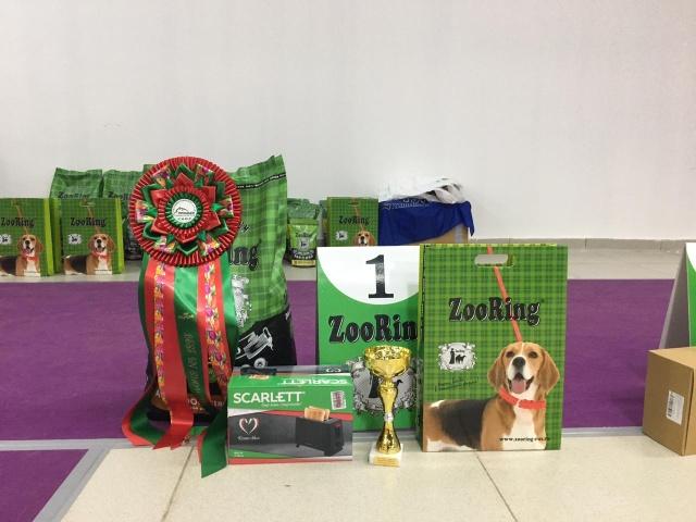 Выставки собак всех пород Кинологического клуба