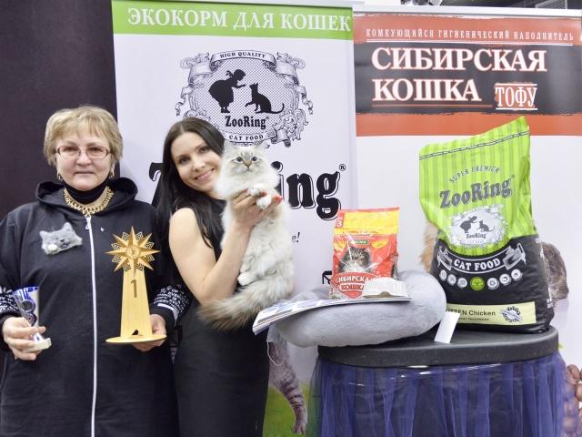 Выставка кошек в г. Уфа 6-7 февраля 2021 года