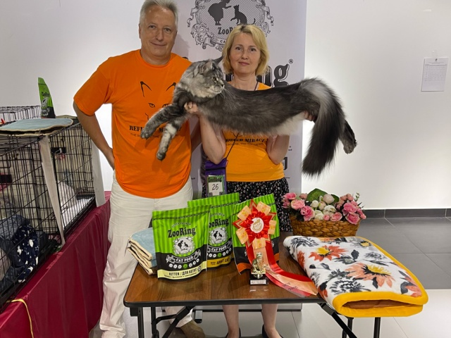 Международная выставка кошек КЛК DENNIS (WCF)
